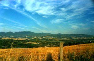 Panorama dalle alture tra Castiglione e Baschi 1989