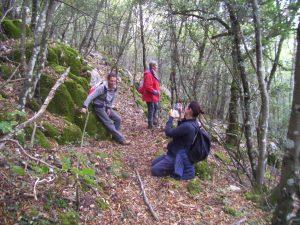 Percorso dei monasteri - Foto nel bosco autunnale