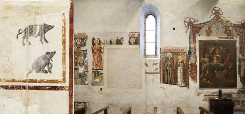 """Affresco Santa Maria a Vallo di Nera, maialino nero cintato, della razza denominata """"cinturino"""" specifica dell'entroterra umbro"""