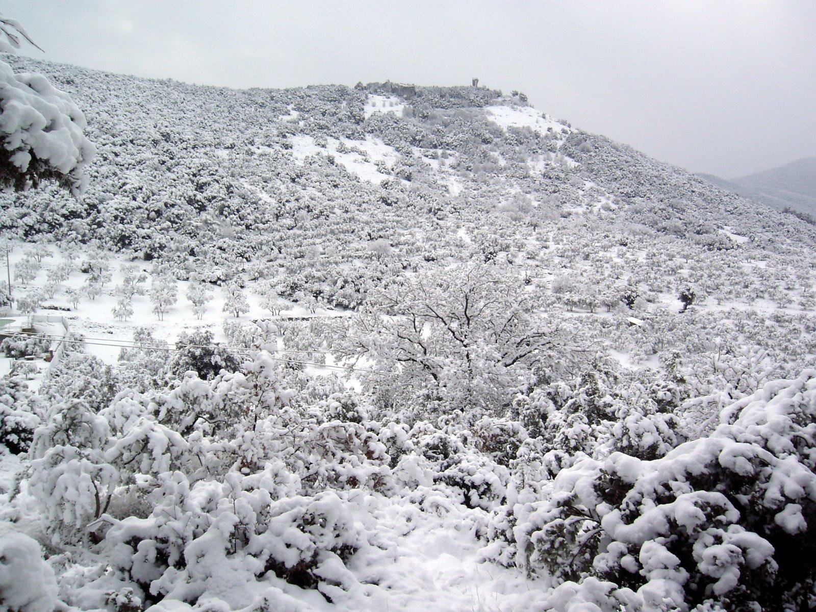 Guardea Vecchia, Neve 2005
